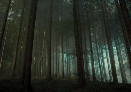 Das-Schwarzwald-Requiem