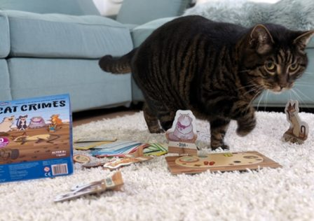 Cat Crimes_Spielszene Katze